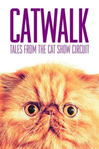 catwalk tales from the catshow circuit